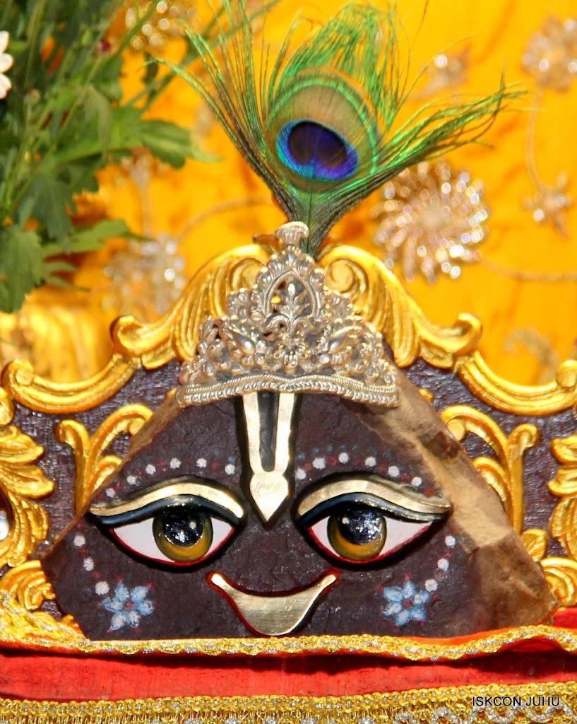 ISKCON Juhu Mangal Deity Darshan 29 Jan 2016 (20)
