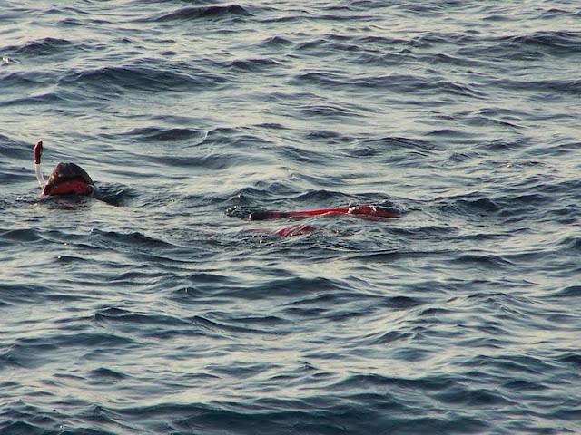 Egypte-2012 - 100_8632.jpg