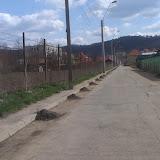Curatenia de primavara 2014 - IMAG1524.jpg