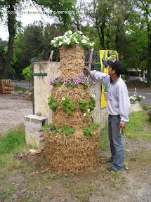 idée : construction d'une pyramide de fleur 100% sphaigne, régulateur d'arrosage la sphaigne nécéssite qu'un entretien minime