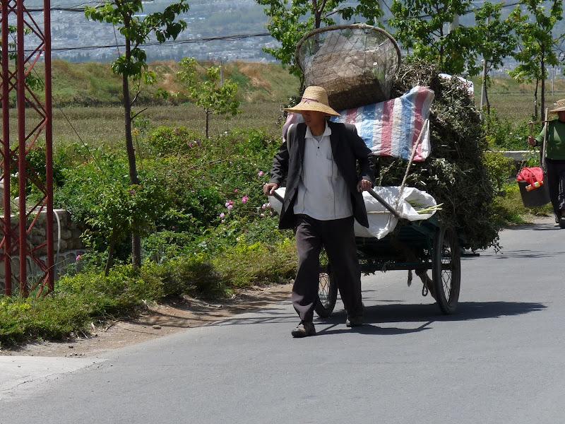 Chine. Yunnan Dali .En vélo vers le lac ERHAI - P1170690.JPG