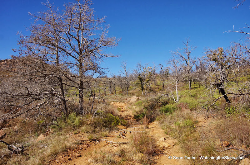 11-09-13 Wichita Mountains Wildlife Refuge - IMGP0420.JPG