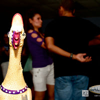 Photos from Dulce Fest Tallahassee Fall 2012