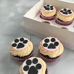 Paw print cupcakes 1.JPG