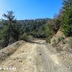 maple_springs_silverado_motorway_img_2194.jpg