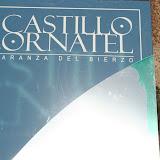 :: Castillo de Cornatel :: febrero 2009 ::.. (León)