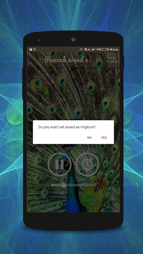Download Peacock Sounds Google Play softwares - ameqQIPMd3Wj