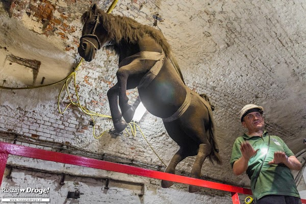 Zabytkowa Kopalnia GUIDO - o koniach, które pracowały pod ziemią