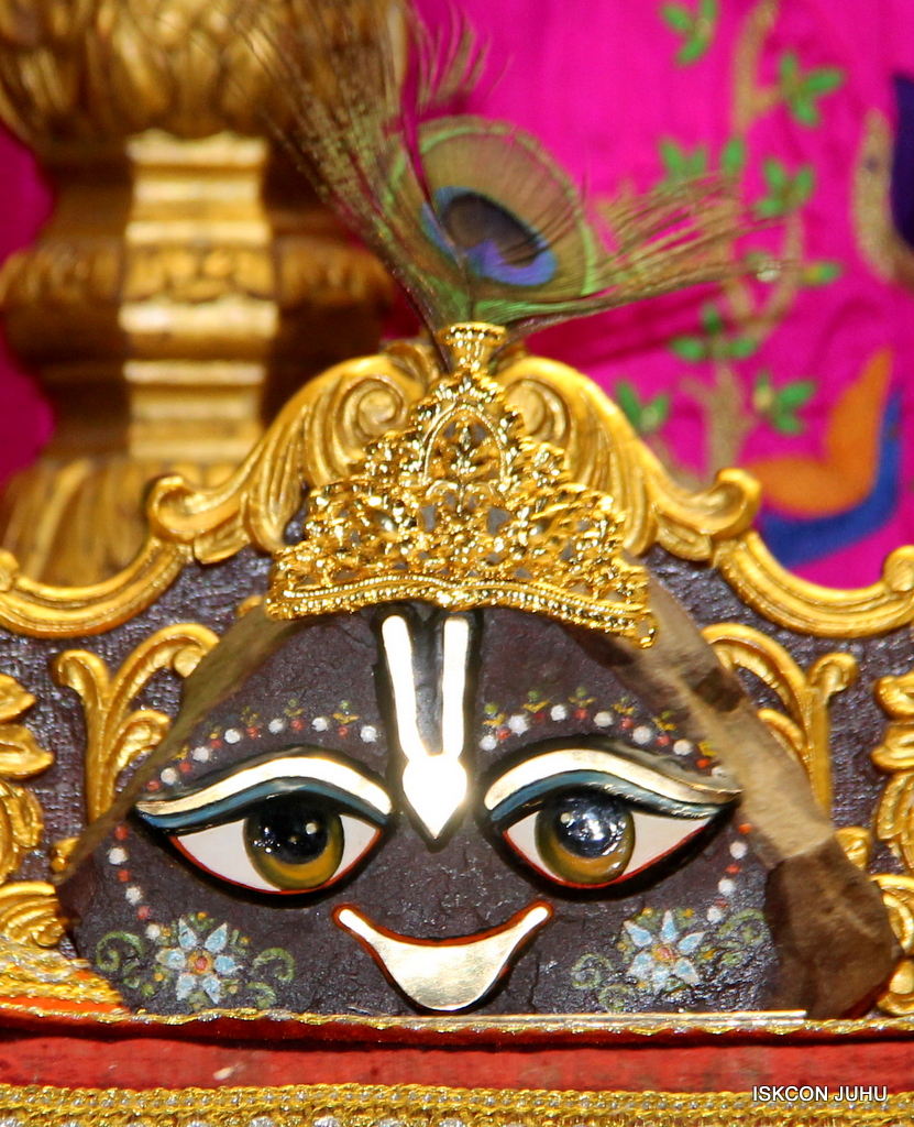 ISKCON Juhu Mangal Deity Darshan on 19th Nov 2016 (24)