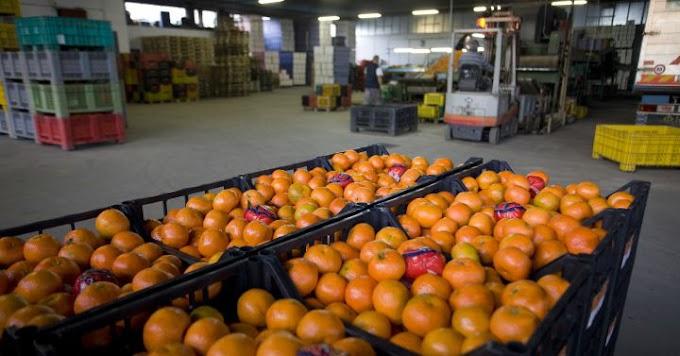 personal almacén frutas-beniaján  👨🌾 👩🌾