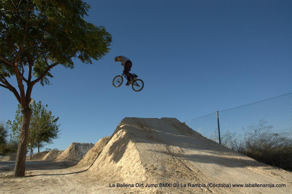 Ballena Dirt Jump BMX 2009 - BMX_09_0083.jpg