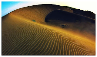 Gumuk pasir lokasi langka di dunia