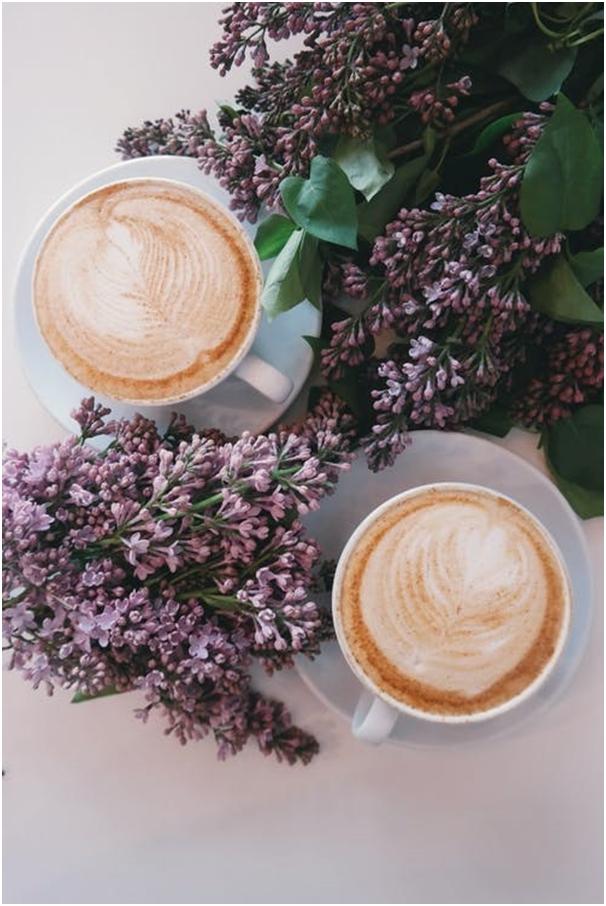 A Brief Guide on Arabica Coffee: Origin and Health Benefits