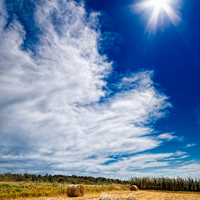 There is a star in the sky by Paulo Mendonça - Landscapes Prairies, Meadows & Fields
