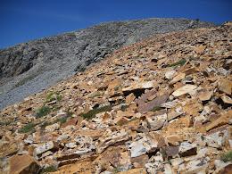 Red granite below Madera Peak.