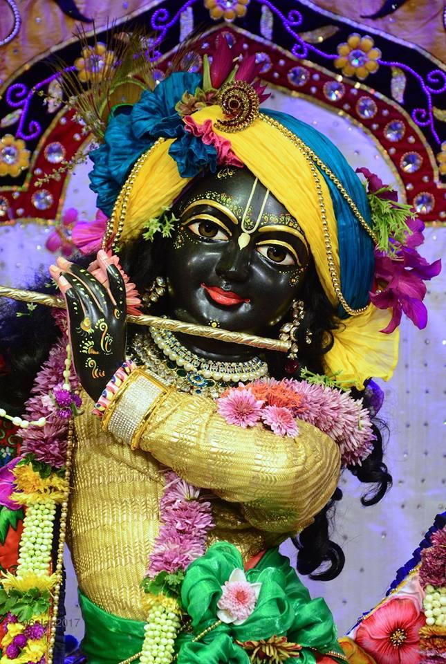 ISKCON GEV Deity Darshan 06 Jan 2017 (9)