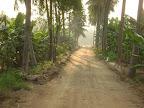 Tapovan Driveway