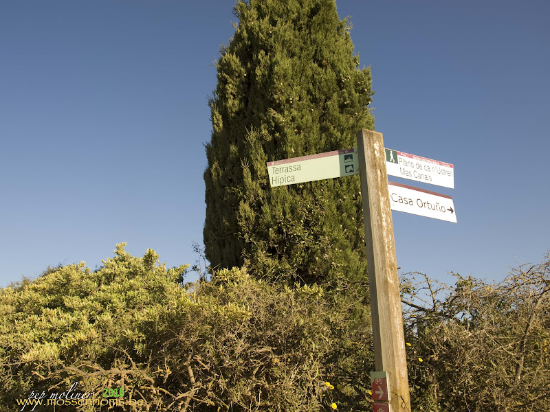 """width=""""100%"""" /> Pel plans de Can n'Ustrell, prop de Mas Canals i la Casa Ortuño</h3> <h3 style="""