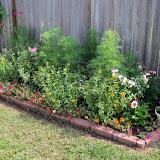 Gardening 2010, Part Two - 101_3242.JPG