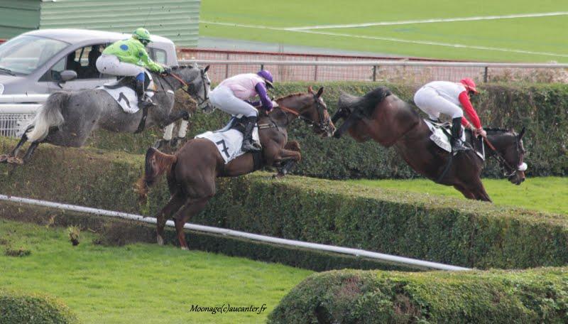 Photos Auteuil 7-11-2015 (48h de l'obstacle) IMG_6238