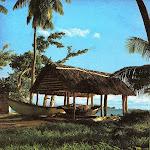 Praslin_pirogues_Seychelles.jpg