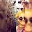 Rachelle Cooke's profile photo
