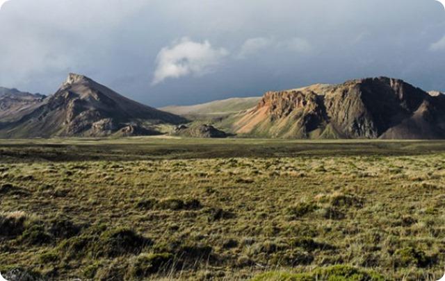 estepa-patagonica