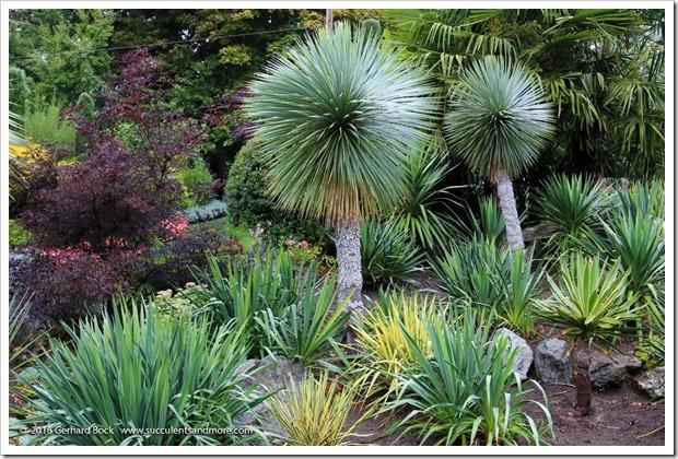 160906_Butchart_Gardens_0005