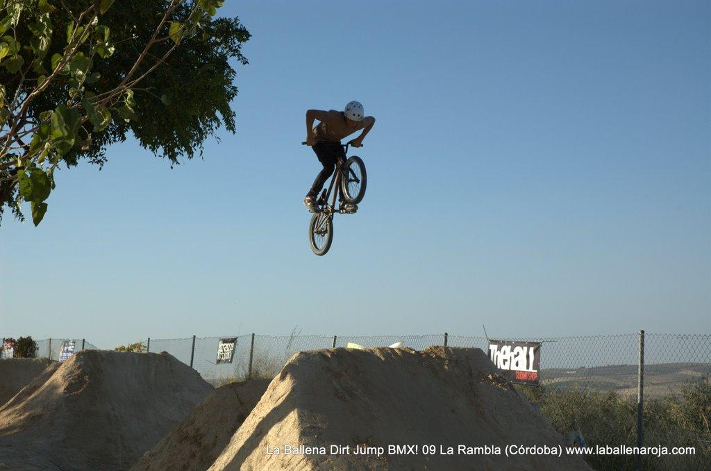 Ballena Dirt Jump BMX 2009 - BMX_09_0091.jpg