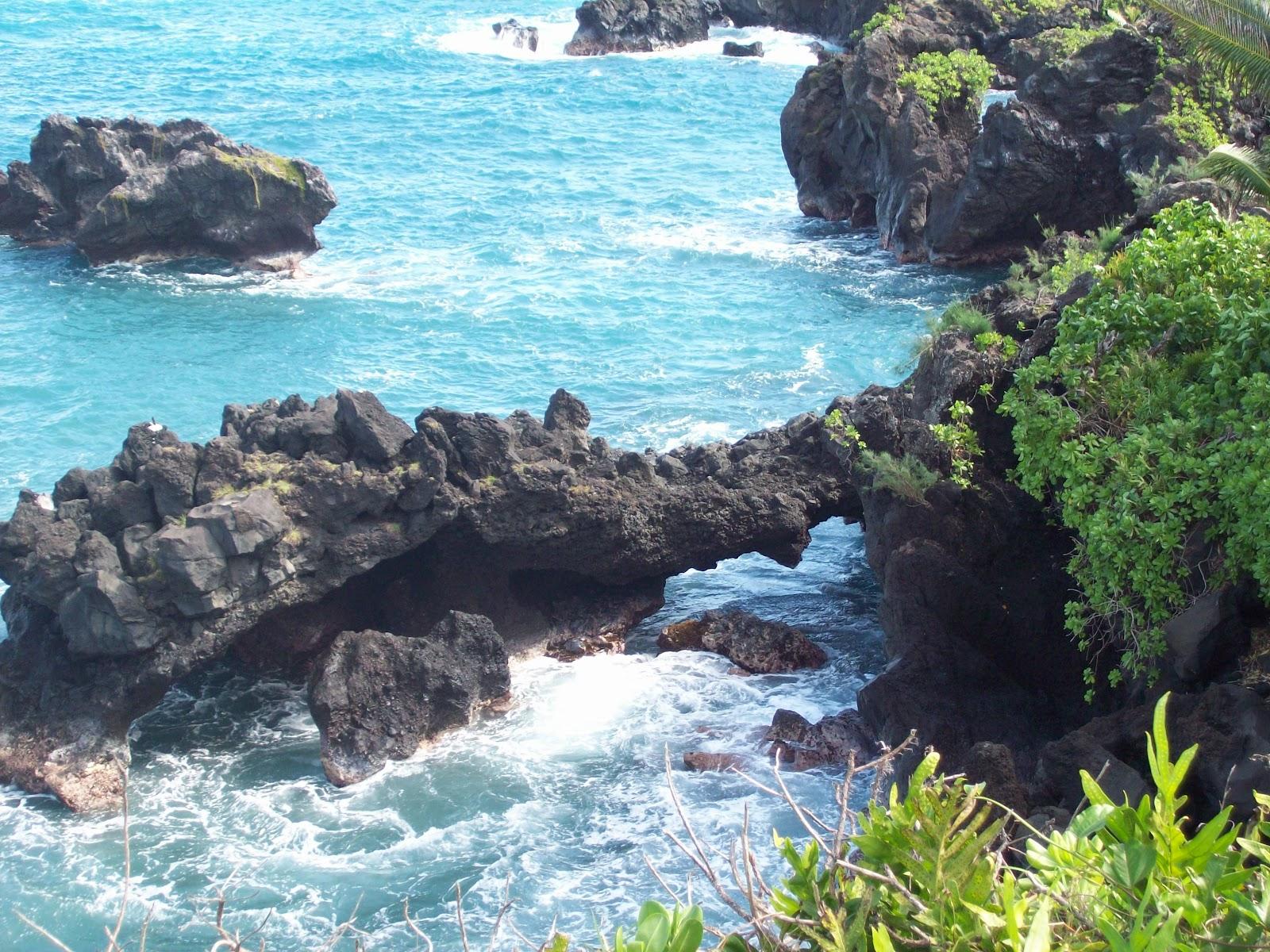 Hawaii Day 5 - 114_1588.JPG