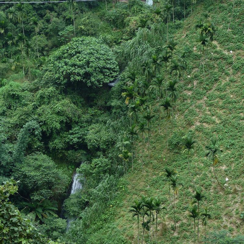 Puli  en passant , entre autres, par les villages de l ethnie Bunum de Loloko et Dili. J 10 - P1170142.JPG