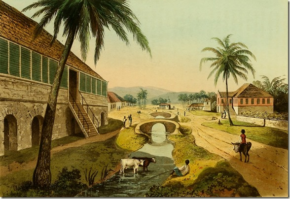 Holland Estate  in St Thomas in the East the property of George Watson Taylor Esq MP