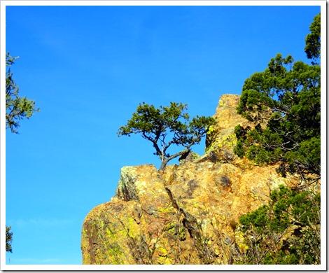 Lost Mine Trail...Big Bend
