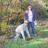 Guilford Salt Meadows Sanctuary Planting - IMG_7838.JPG