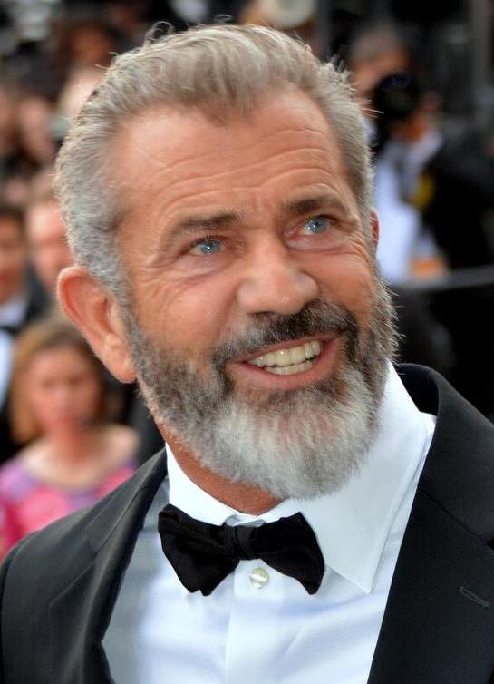 Mel Gibson  Net Worth, Income, Salary, Earnings, Biography, How much money make?