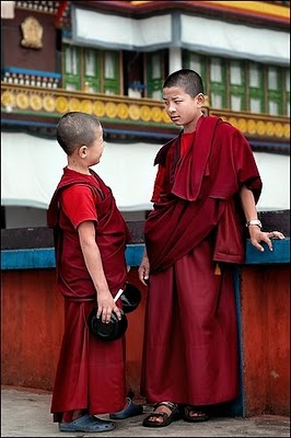 Ladakh Buddhist Monastery Values Discipline Image