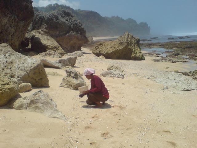 Pantai Watu Lawang - Gunungkidul : Memungut Kulit Kerang di antara pasir putih