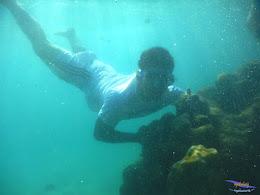 pulau pari, 23-24 mei 2015 23