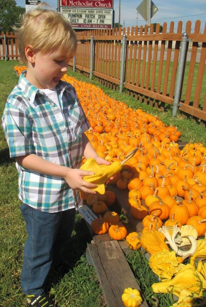 Pumpkin Patch 2015 - 12139922_10153209194852404_8272075725082068323_o.jpg