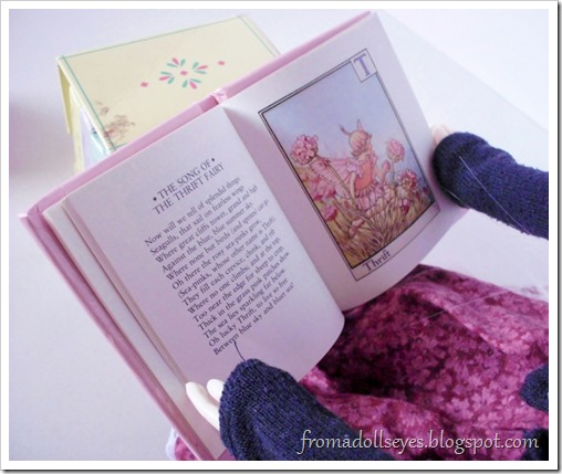 Flower Fairies Little Book Collection, a tiny set of books.  Just the right size for dolls.