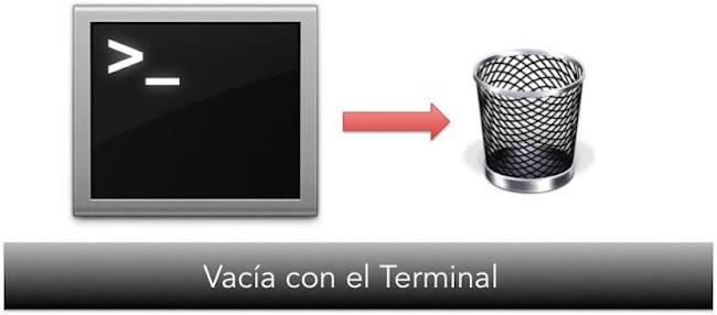 Papelera-Terminal.jpg
