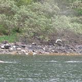 Mitofrania Island to Geographic Harbor