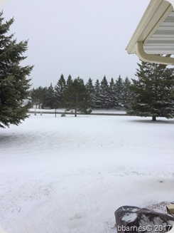 Snow afternoon 04262017