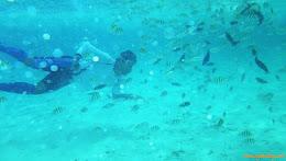 ngebolang-pulau-harapan-singletrip-nov-2013-pen-05