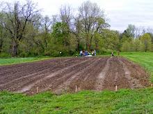 2009_0502_Potato-Planting-001