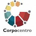Providencia mediante la cual se designa a Gregorio Ramón Ortega Campos, como Auditor Interno Interino, de la Corporación de Desarrollo de la Región Central