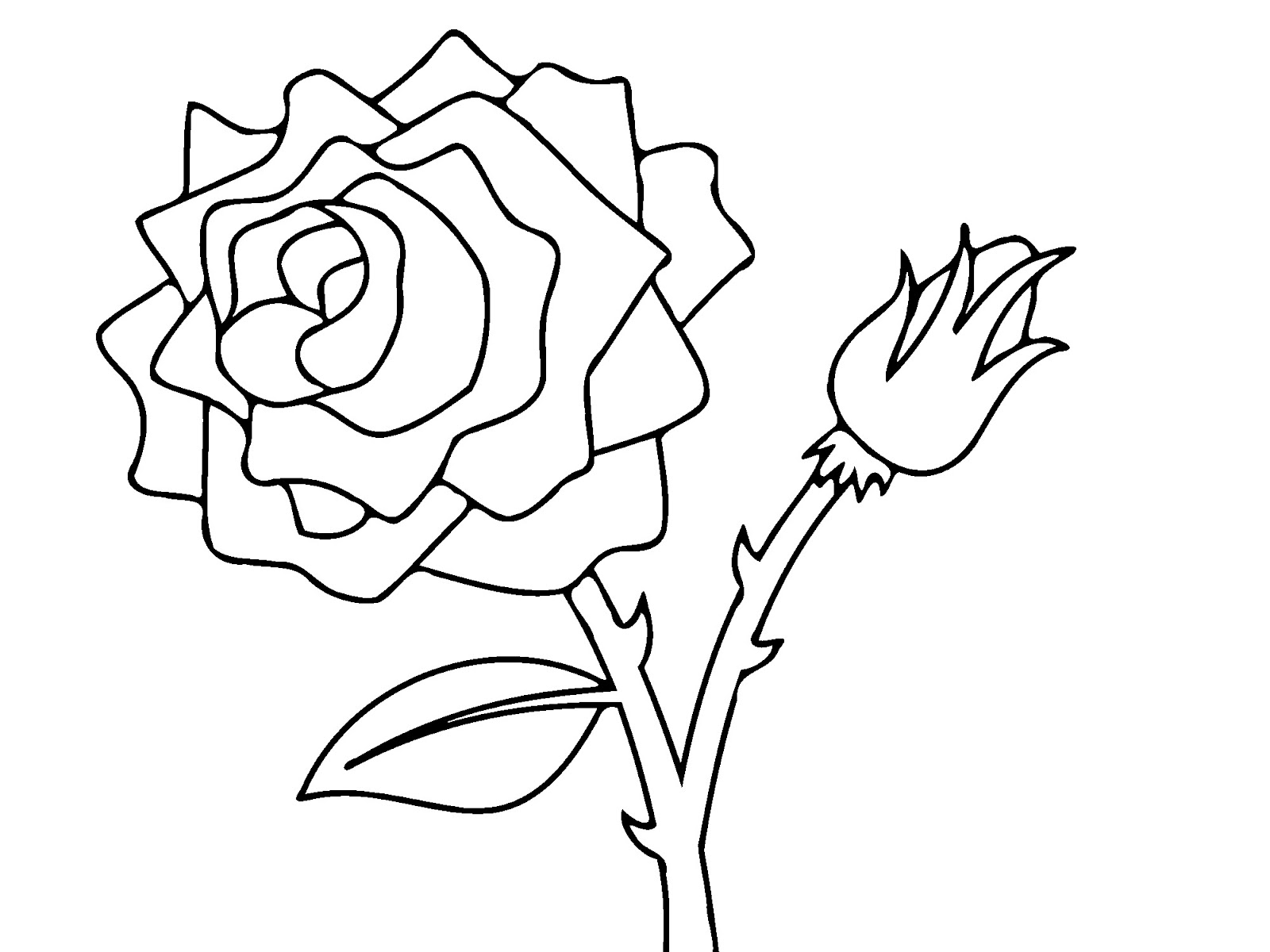 Top 10 Beautiful Rose Coloring Pages Drawing