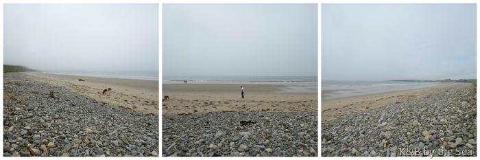 august 2016 living beach