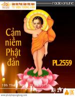 Tìm Hiểu Phật Giáo Kỳ 29 - Cảm niềm Phật đản PL:2559