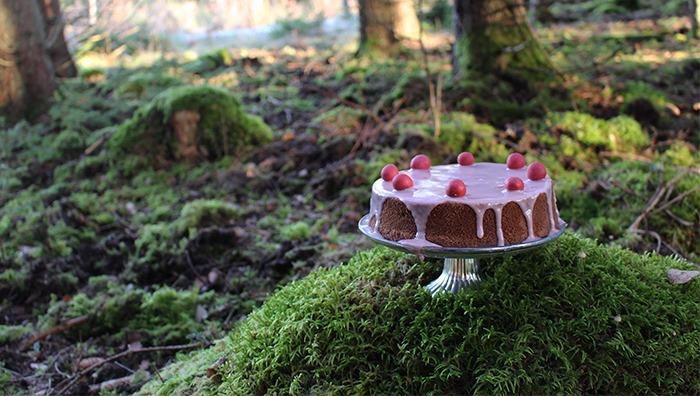 Kakan är dekorerad med ljusrosa glasyr och rosa runda chokladdoppade hasselnötter.